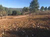 Kestel Seitabat Köyünde Yola Cephe Satılık Hobi Bahçesi