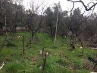 Durdane Köy İçi Satılık 850 M2 Arsa