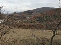 Kestel Erdoğan Köyde Satılık Ucuz Hobi Bahçelik Yer