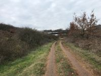 Erdoğan Köyde Yolu Olan Satılık Hobi Bahçesi