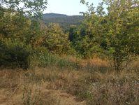 Mustafakemalpaşa Kosova Köy Mh Satılık Yatırımlık Tarla