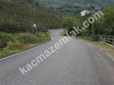 Trabzon Gürbulakta Kiralık 6 Dönüm Arazi 2