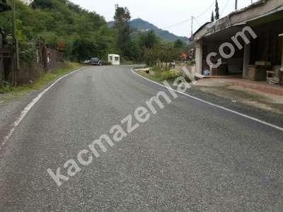Trabzon Gürbulakta Kiralık 6 Dönüm Arazi 4