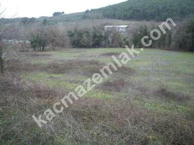 Karacabey Doğla Köyünde Satılık 35 Dönüm Arazi,yola Yak 2