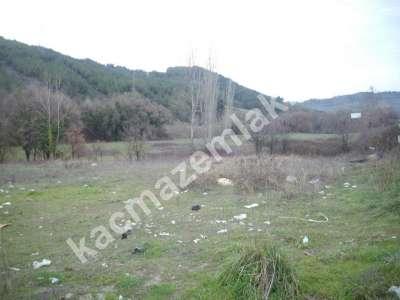 Karacabey Doğla Köyünde Satılık 35 Dönüm Arazi,yola Yak 1