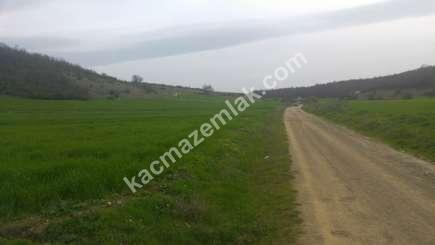 Yenişehir Marmaracık Köyünde Satılık Arazi 1