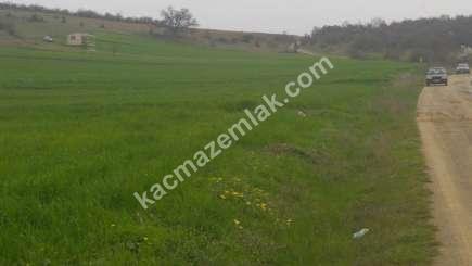 Yenişehir Marmaracık Köyünde Satılık Arazi 4