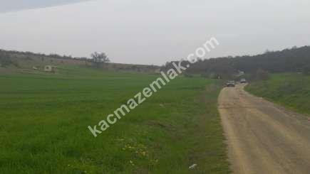 Yenişehir Marmaracık Köyünde Satılık Arazi 2
