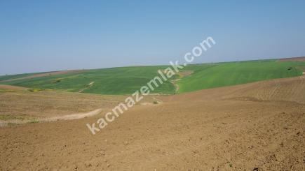 Çanakkale Gelibolu Yolu Üzeri 172 Dönüm Süper Arazi 2