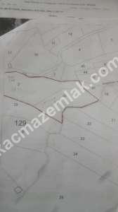 Sapanca Fevziye'de 7256 M² Satılık Arazi 1
