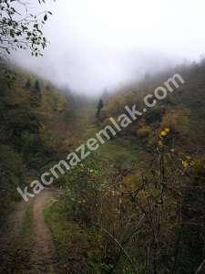 Trabzon Yomrada Satılık 12.478 M2 Arazi 8