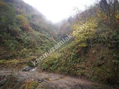 Trabzon Yomrada Satılık 12.478 M2 Arazi 7
