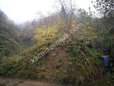 Trabzon Yomrada Satılık 12.478 M2 Arazi 4