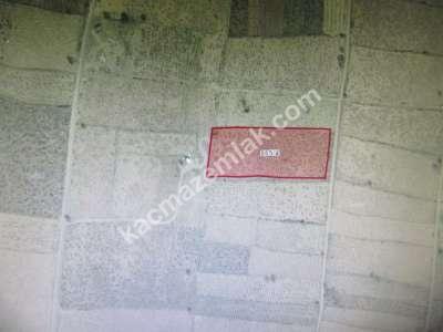 Develi Reşadiye Mah Gözelce Bag M2. 4468 8