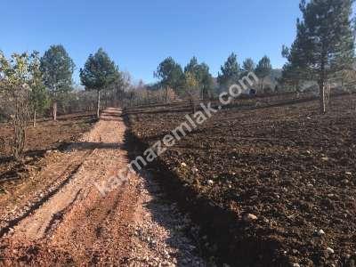 Kestel Seitabat Köyünde Yola Cephe Satılık Hobi Bahçesi 4