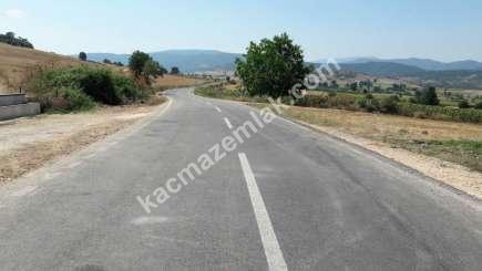 Yenişehir Selimiye Köyü Mah Satılık Cevizlik Tarla 6