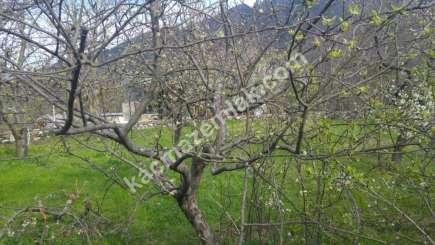 Yıldırım Zeyniler Mah Satılık 700 M2 Manzaralı Bahçe 3