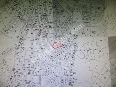 Develi Aşagıeverek Mah Kalealtı Mavki M2 30300 Bahçe 6