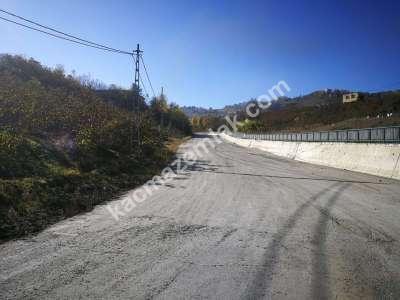 Trabzon Gürbulak'da Satılık Yol Üzeri Arsa..! 4