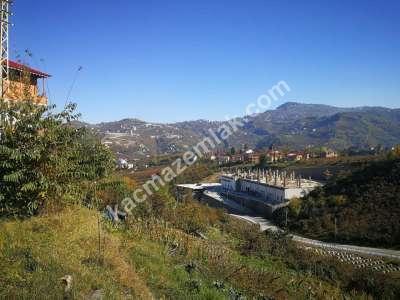 Trabzon Gürbulak'da Satılık Yol Üzeri Arsa..! 9