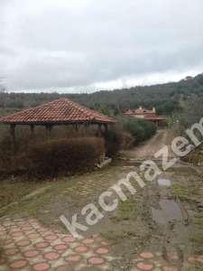 Mudanya,Trilye Köyü Satılık Harika Kelepir Çiftlik. 7