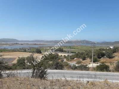 Deniz Göl Manzaralı 13,000 M2 Arsa 9
