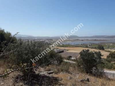 Deniz Göl Manzaralı 13,000 M2 Arsa 17