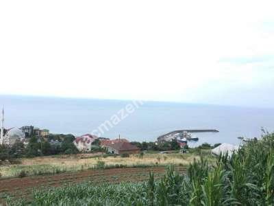 Trabzon Akçaabat Akçakalede Satılık Mükemmel Arsa..! 1
