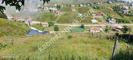 Trabzon Kaya Başı Yaylasında Satılık 1 Dönüm Arsa..! 6