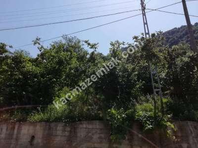 Trabzon Çaykara Koldere De Satılık 2450 M2 Arsa 15