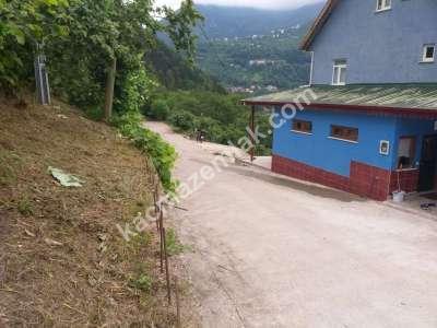 Trabzon Çaykara Koldere De Satılık 2450 M2 Arsa 19