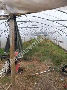 Bigada Yol Üstü Acil Satılık Besi Çiftliği Mandıra Sera 7