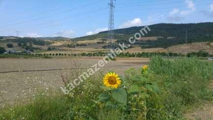 Yenişehir Marmaracık Köyünde Ana Yola Cephe Sat. Tarla. 11