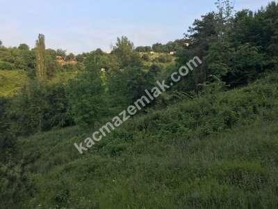 Kestel Burhaniye Köyünde Satılık Hobi Bahçeleri 4