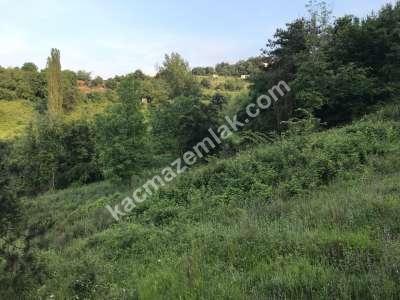 Kestel Burhaniye Köyünde Satılık Hobi Bahçeleri 3