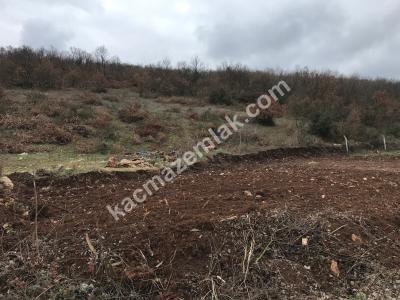 Erdoğan Köyde Yolu Olan Satılık Hobi Bahçesi 3