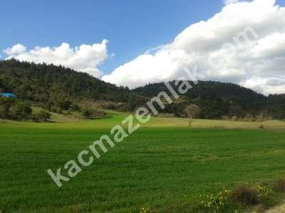 Bursa Kestel Gölcük Köy De Satılık Baraj Manzara Tarla 7