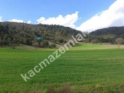 Bursa Kestel Gölcük Köy De Satılık Baraj Manzara Tarla 8