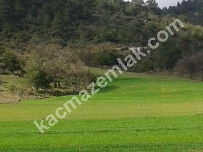 Bursa Kestel Gölcük Köy De Satılık Baraj Manzara Tarla 6