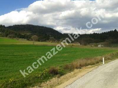 Bursa Kestel Gölcük Köy De Satılık Baraj Manzara Tarla 9