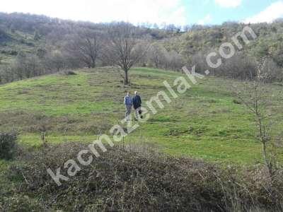 Bursa Kestel Gölcük Köyünde Acil Satılık Tarla 9