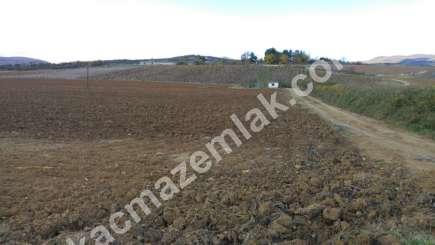330 Dönüm Satılık Tarım Ve Sanayi Kullanıma Uygun Arazi 14