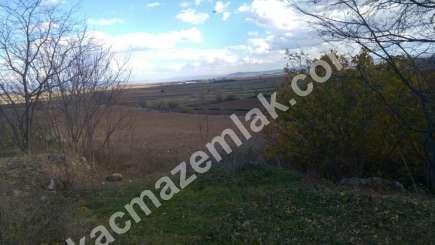 330 Dönüm Satılık Tarım Ve Sanayi Kullanıma Uygun Arazi 2