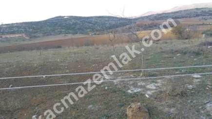 330 Dönüm Satılık Tarım Ve Sanayi Kullanıma Uygun Arazi 5