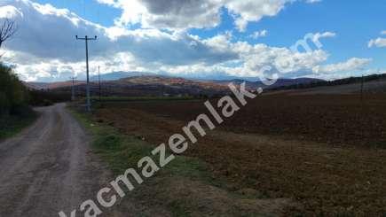 330 Dönüm Satılık Tarım Ve Sanayi Kullanıma Uygun Arazi