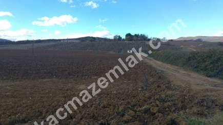 330 Dönüm Satılık Tarım Ve Sanayi Kullanıma Uygun Arazi 8