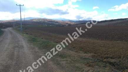330 Dönüm Satılık Tarım Ve Sanayi Kullanıma Uygun Arazi 7