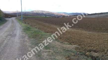 330 Dönüm Satılık Tarım Ve Sanayi Kullanıma Uygun Arazi 11