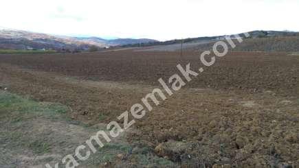 330 Dönüm Satılık Tarım Ve Sanayi Kullanıma Uygun Arazi 10