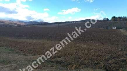 330 Dönüm Satılık Tarım Ve Sanayi Kullanıma Uygun Arazi 6